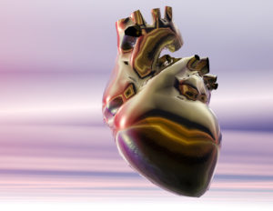 Digital visualization of a human heart